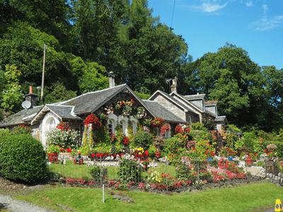 Garten mit vielen bunten Blumen